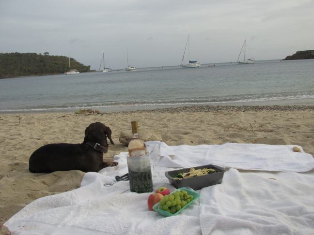 Picnic at Galleon beach