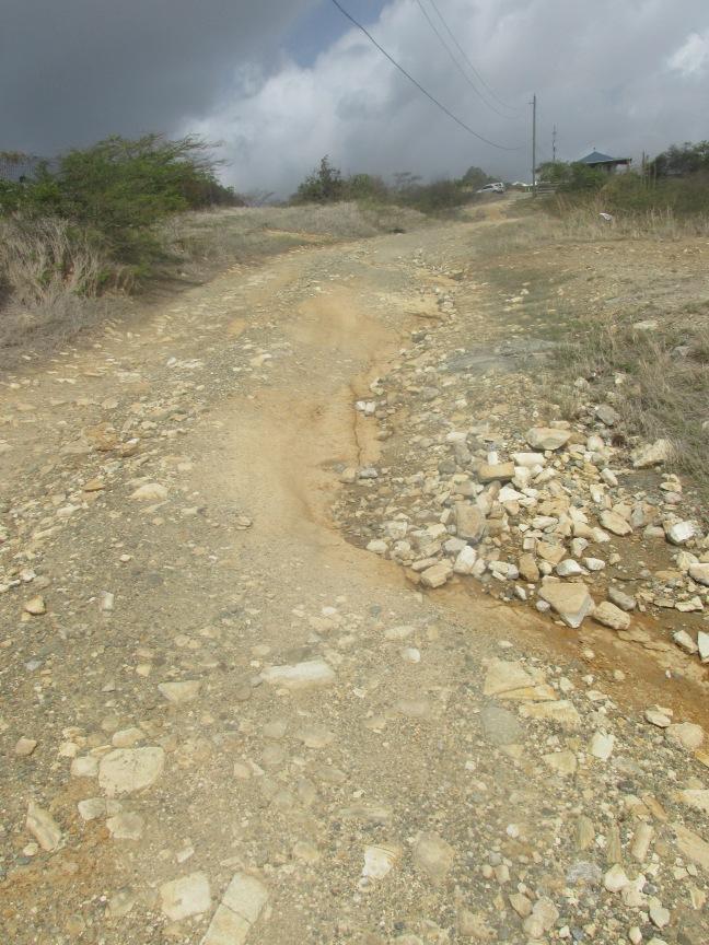 Driving in Antigua