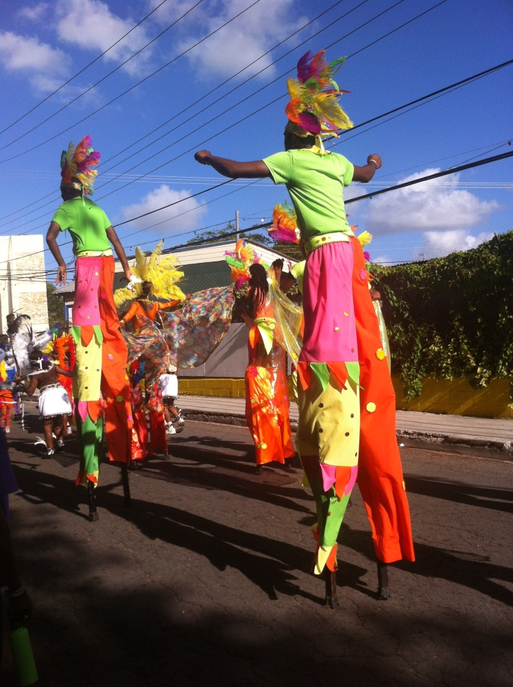 The dazzling colours of the parade