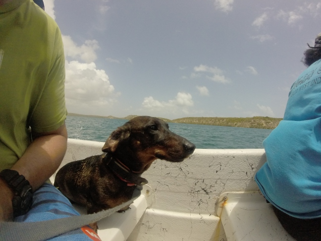 Boat ride to the reef