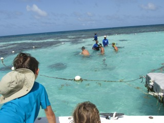 Stingray City - view from the boat