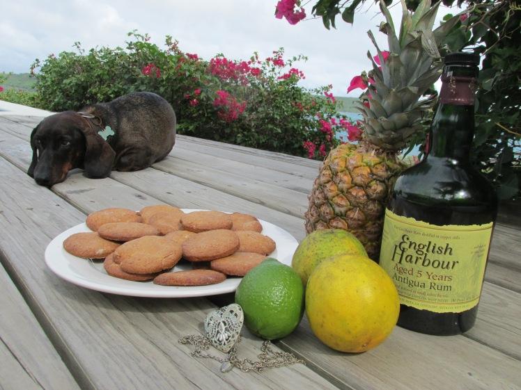 Surf Dog, Antiguan Rum Punch, Christmas cookies