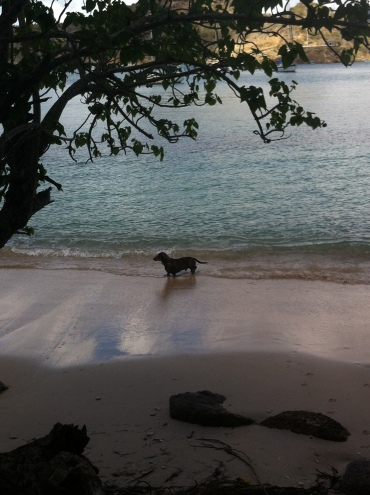 Dipping toes into the warm Caribbean Sea