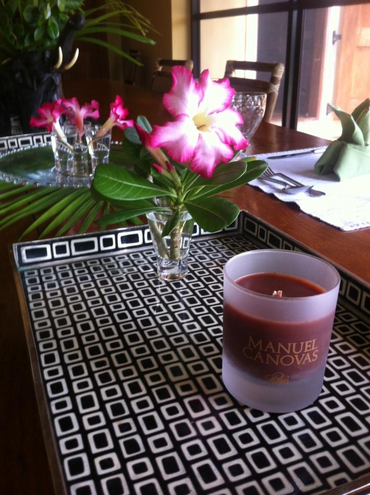 Manuel Canovas 'Bois de Lune' scented candle