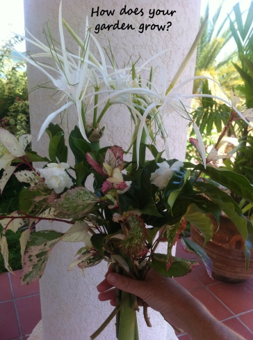 My fragrant Summer pickings