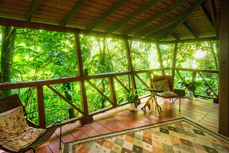 View from the treehouse, Cocoa Cottages, Dominica