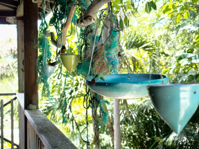 Ceramic bird feeder by Sarah Fuller at her home in Antigua. Photo by Jennifer Ritchie.